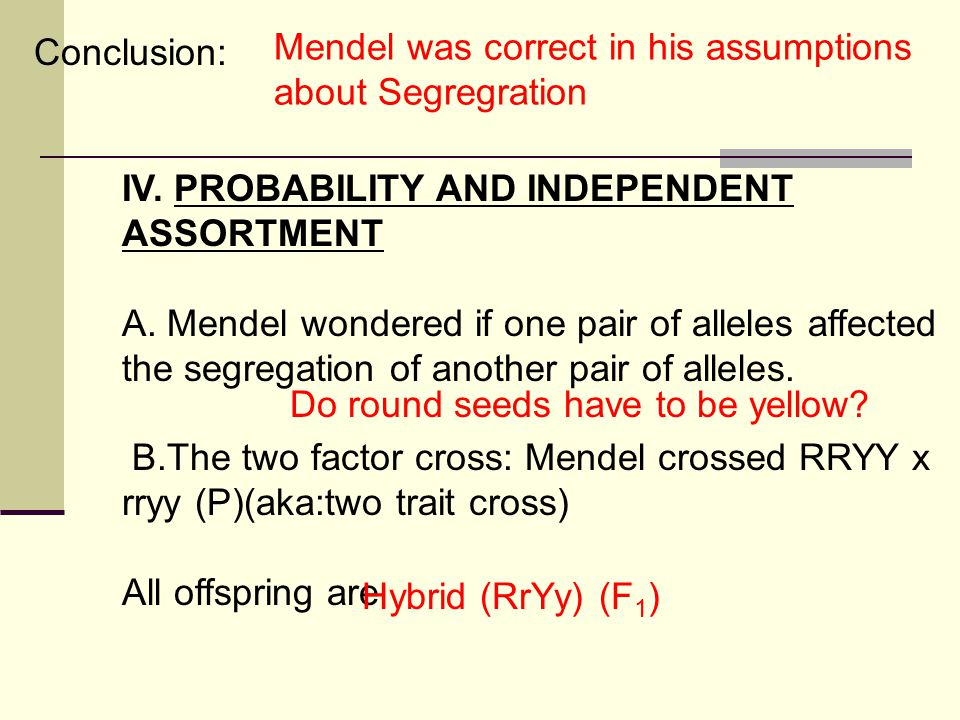 Conclusion: IV. PROBABILITY AND INDEPENDENT ASSORTMENT A. Mendel wondered if one pair of alleles affected the segregation of another pair of alleles.