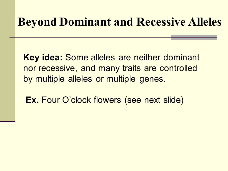 Key idea: Some alleles are neither dominant nor recessive, and many traits are controlled by multiple alleles or multiple genes. Ex. Four O'clock flow