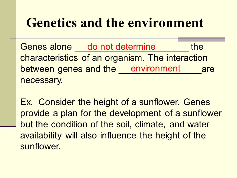 Genes alone ______________________ the characteristics of an organism.