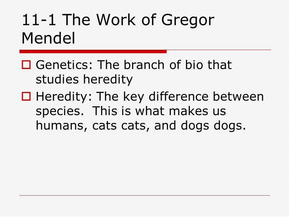 I.Gregor Mendel (1822) – Father of Genetics  A.