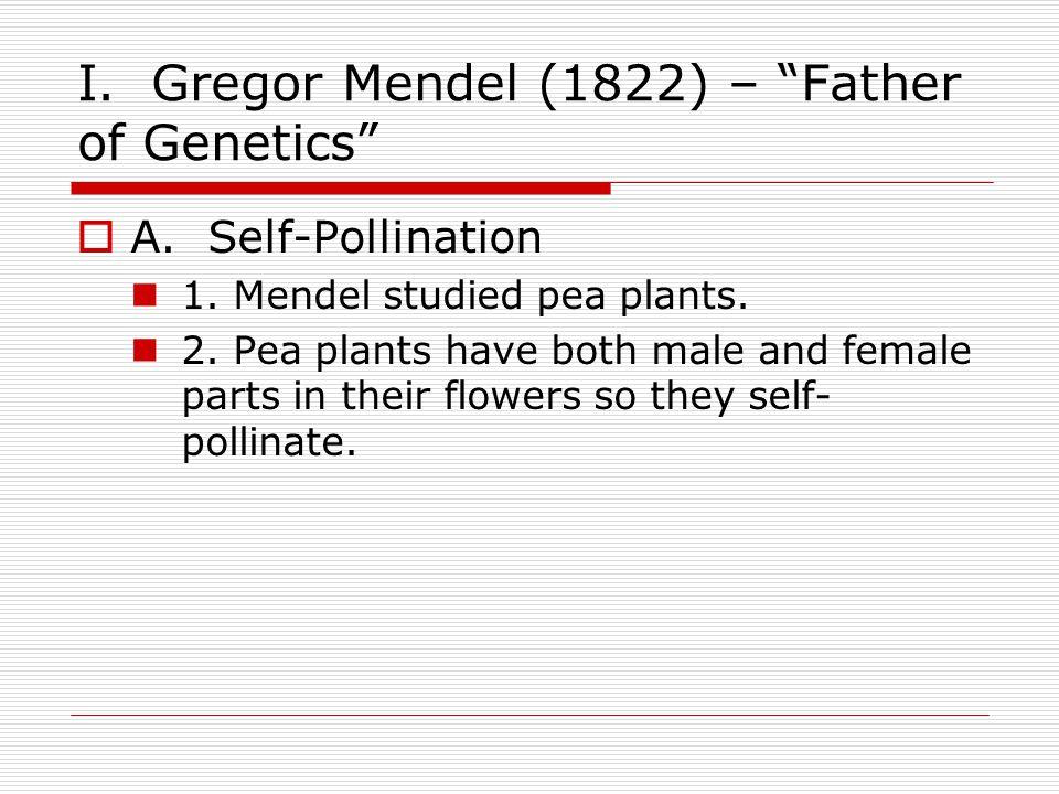  B.Cross-Pollination 1.