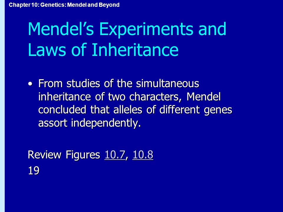 Chapter 10: Genetics: Mendel and Beyond Mendel's Experiments and Laws of Inheritance From studies of the simultaneous inheritance of two characters, M