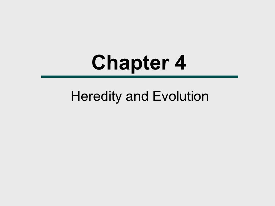 Chapter 4 Heredity and Evolution