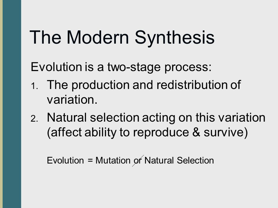 The Modern Synthesis Evolution is a two-stage process: 1. The production and redistribution of variation. 2. Natural selection acting on this variatio