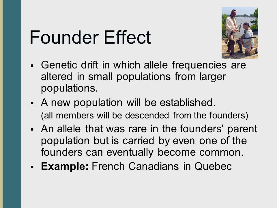 Founder Effect  Genetic drift in which allele frequencies are altered in small populations from larger populations.  A new population will be establ