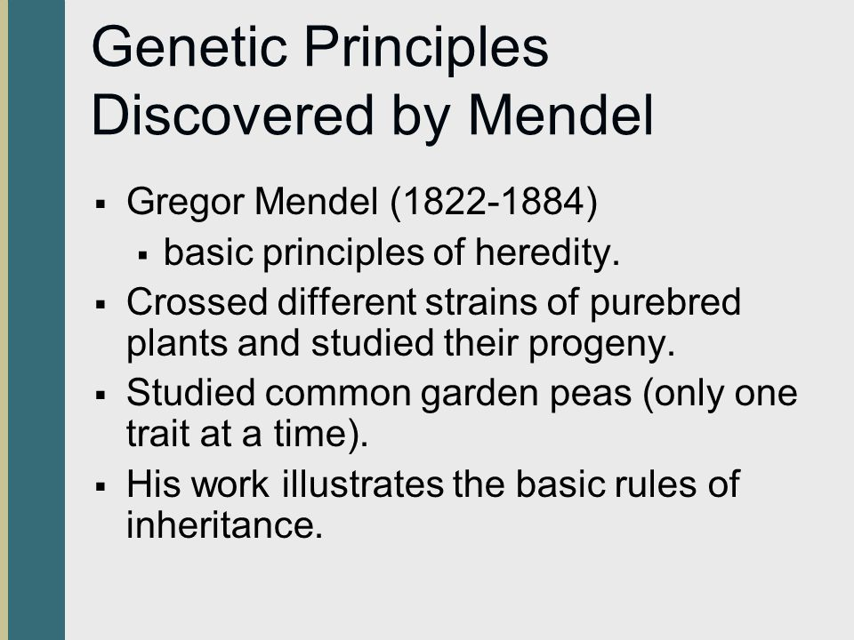 Genetic Principles Discovered by Mendel  Gregor Mendel (1822-1884)  basic principles of heredity.  Crossed different strains of purebred plants and