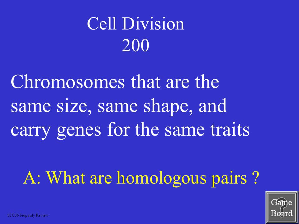 Cell Division 100 A: What is prophase.
