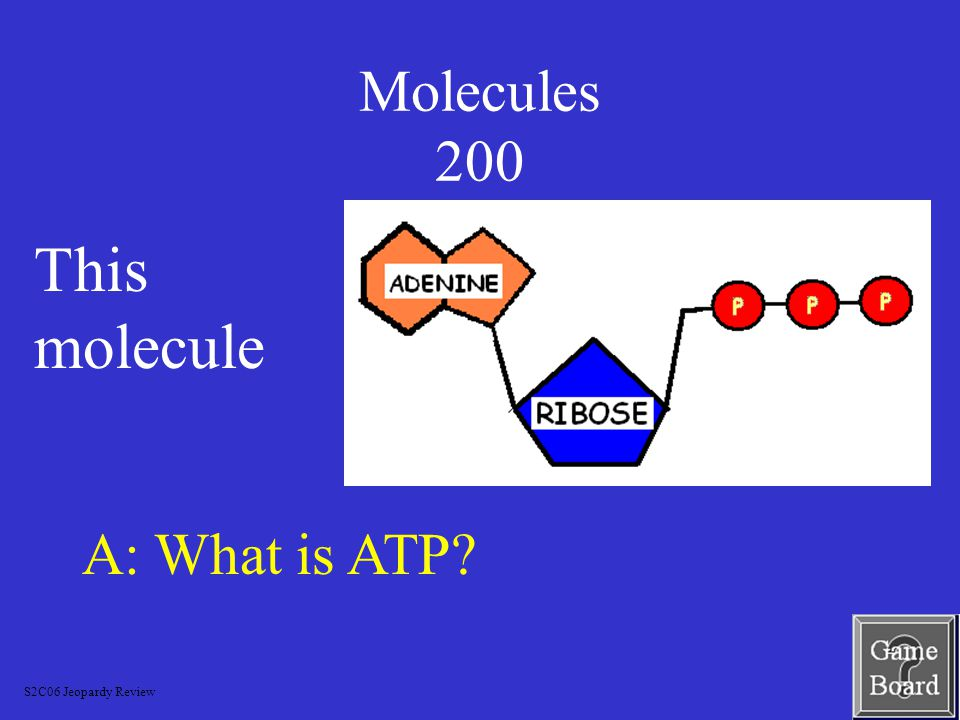 Molecules 100 A: What is the head.