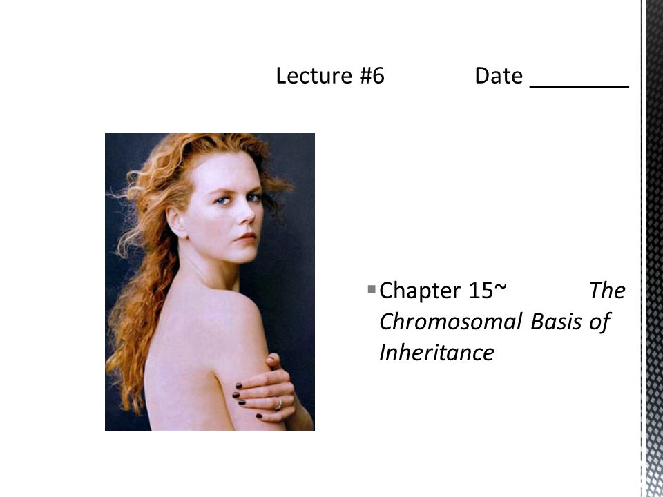  Chapter 15~ The Chromosomal Basis of Inheritance