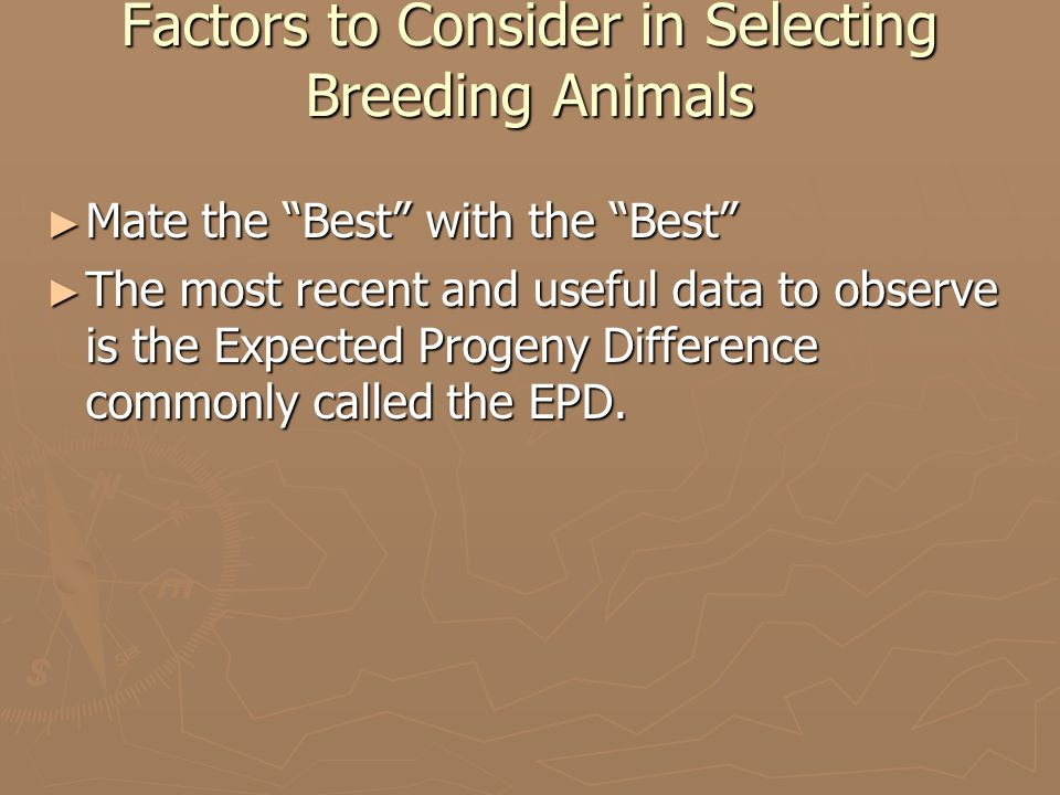 Factors to Consider in Selecting Breeding Animals ► Mate the Best with the Best ► The most recent and useful data to observe is the Expected Progeny Difference commonly called the EPD.