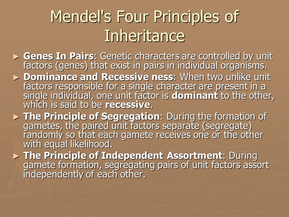 Mendel s Four Principles of Inheritance ► Genes In Pairs: Genetic characters are controlled by unit factors (genes) that exist in pairs in individual organisms.