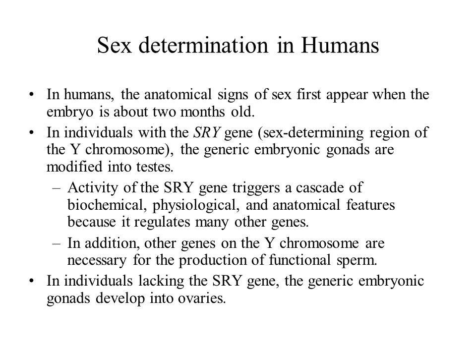 Sex determination in Humans In humans, the anatomical signs of sex first appear when the embryo is about two months old.