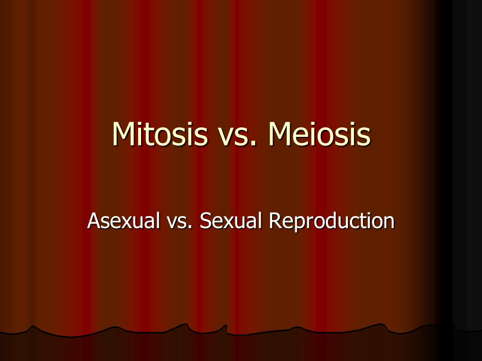 Mitosis vs. Meiosis Asexual vs. Sexual Reproduction