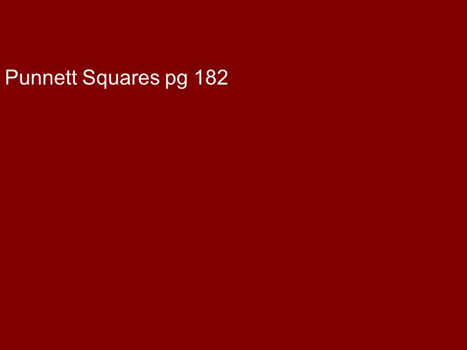 Punnett Squares pg 182