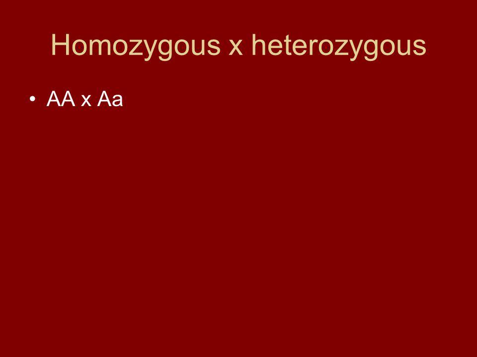 Homozygous x heterozygous AA x Aa