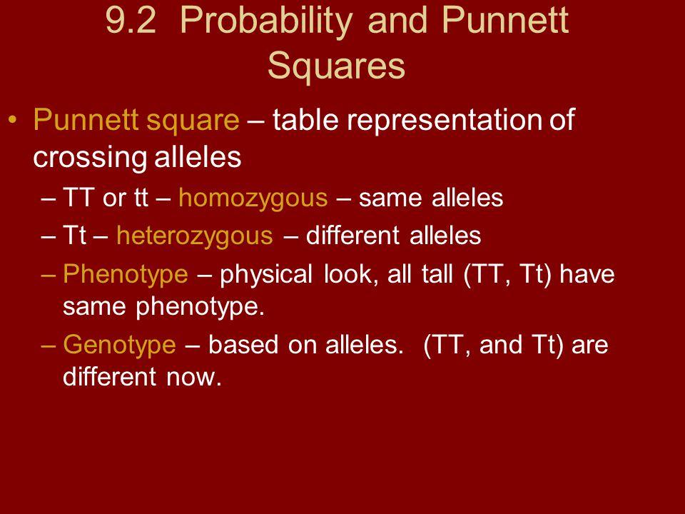 9.2 Probability and Punnett Squares Punnett square – table representation of crossing alleles –TT or tt – homozygous – same alleles –Tt – heterozygous – different alleles –Phenotype – physical look, all tall (TT, Tt) have same phenotype.