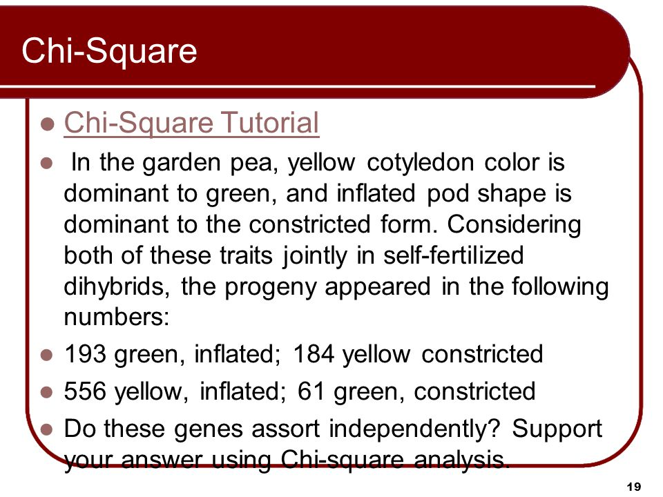Chi-Square Chi-Square Tutorial In the garden pea, yellow cotyledon color is dominant to green, and inflated pod shape is dominant to the constricted f