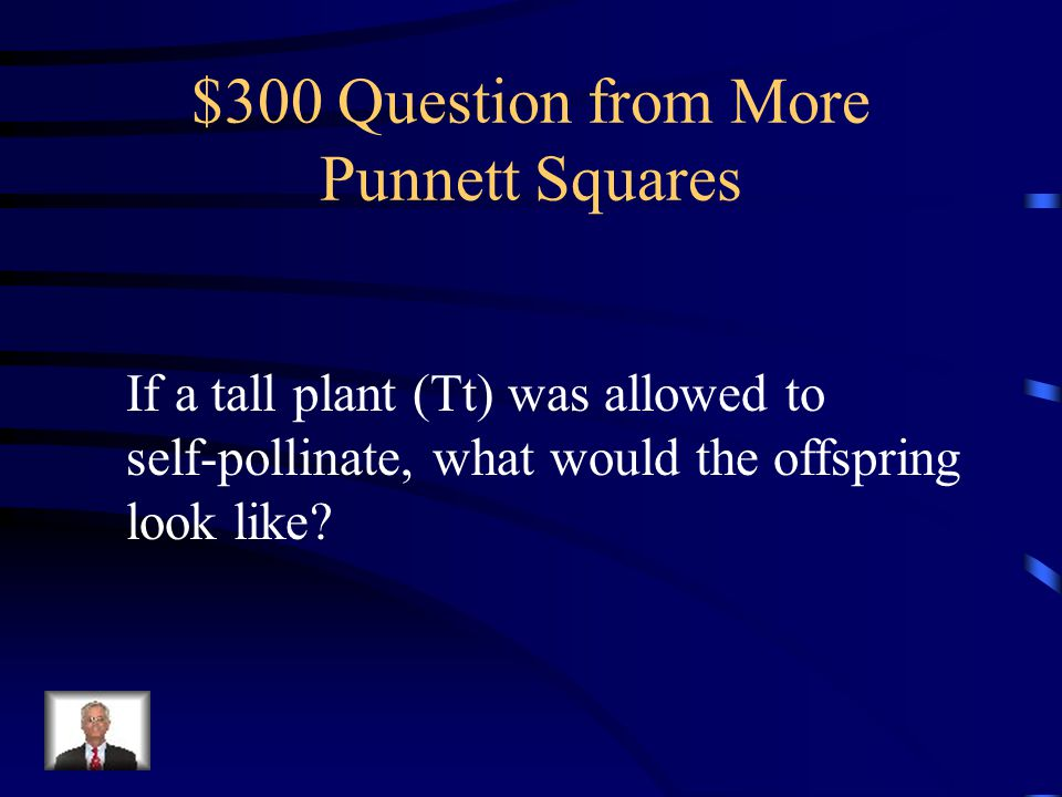 $200 Answer from More Punnett Squares Vestigial wing