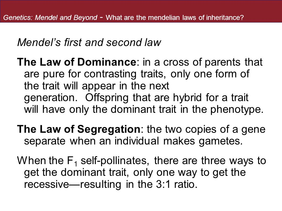 Mendel's first and second law The Law of Dominance: in a cross of parents that are pure for contrasting traits, only one form of the trait will appear in the next generation.