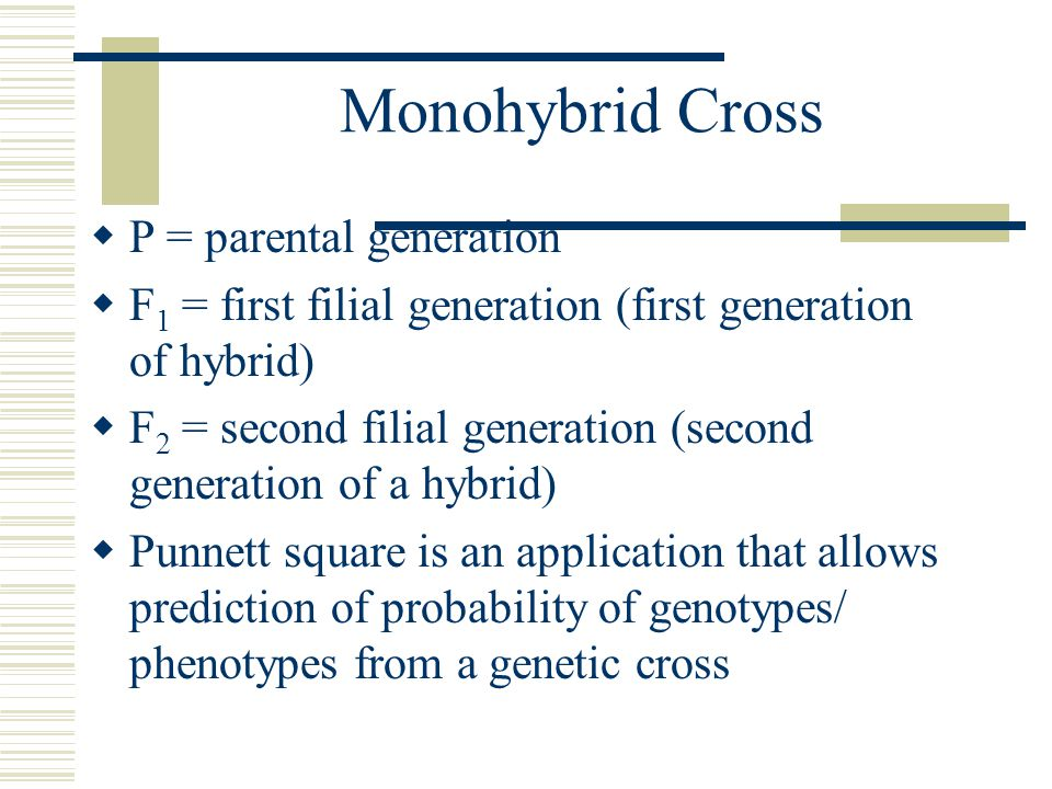 Monohybrid Cross  P = parental generation  F 1 = first filial generation (first generation of hybrid)  F 2 = second filial generation (second generation of a hybrid)  Punnett square is an application that allows prediction of probability of genotypes/ phenotypes from a genetic cross