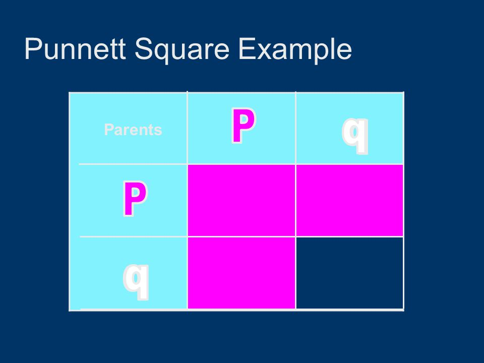 Punnett Square Example Parents