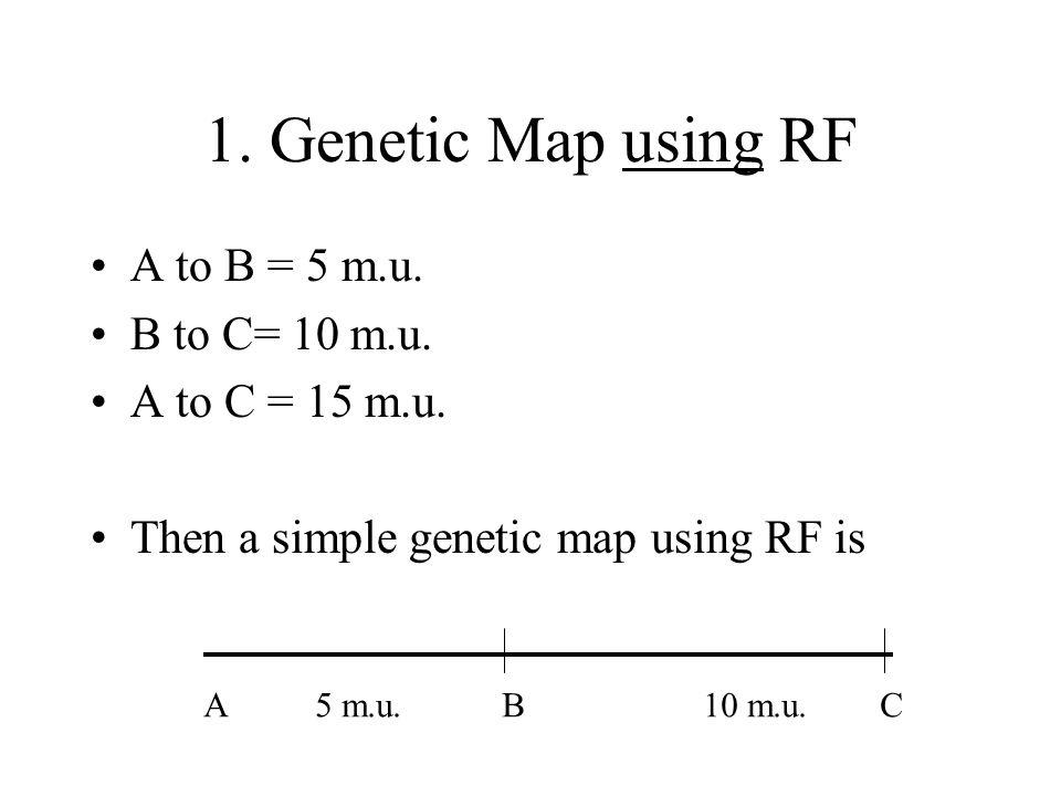 1. Genetic Map using RF A to B = 5 m.u. B to C= 10 m.u. A to C = 15 m.u. Then a simple genetic map using RF is A 5 m.u. B 10 m.u. C