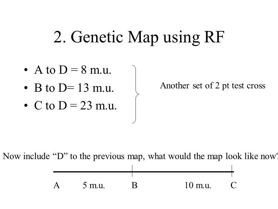 2. Genetic Map using RF A to D = 8 m.u. B to D= 13 m.u.