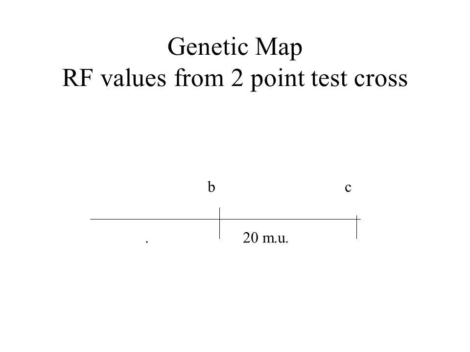 Genetic Map RF values from 2 point test cross b c. 20 m.u.