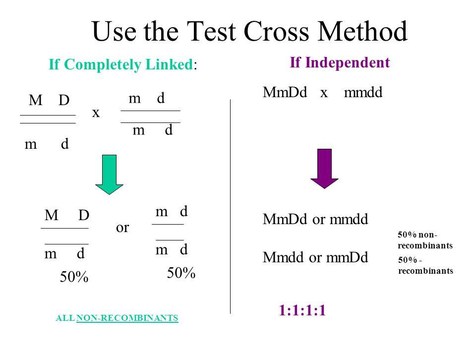Use the Test Cross Method x m d M D m d or m d ALL NON-RECOMBINANTS m d M D MmDd x mmdd MmDd or mmdd Mmdd or mmDd 50% non- recombinants 50% - recombin