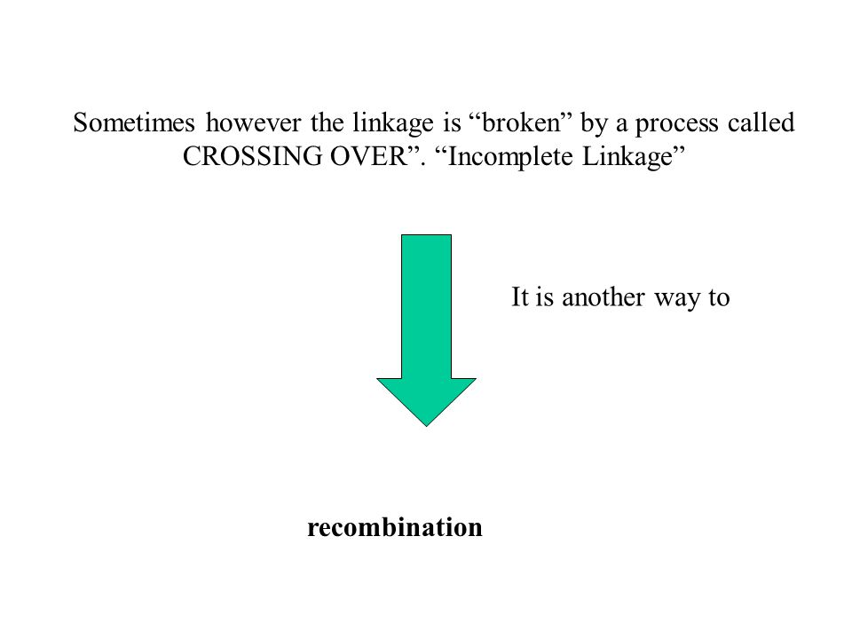 """Sometimes however the linkage is """"broken"""" by a process called CROSSING OVER"""". """"Incomplete Linkage"""" recombination It is another way to"""