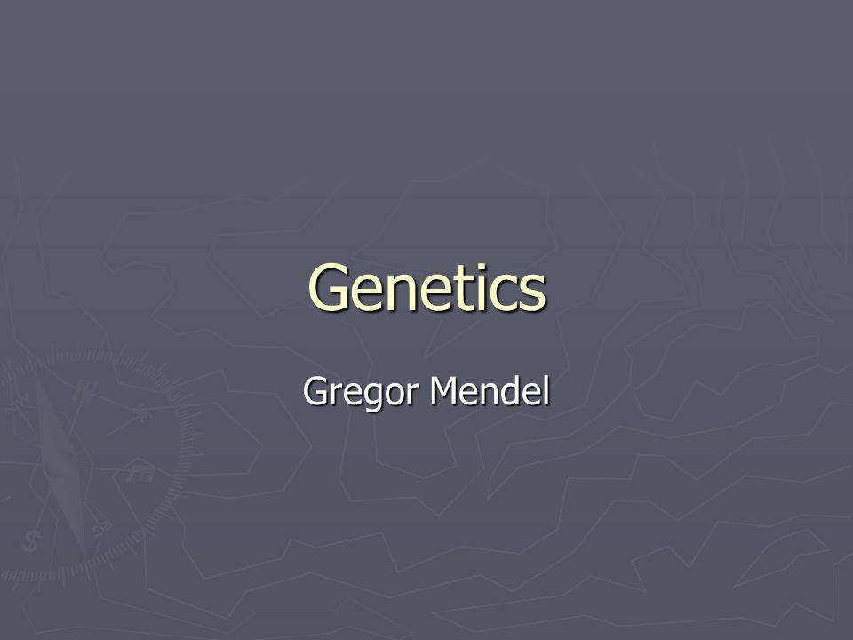 Genetics Gregor Mendel