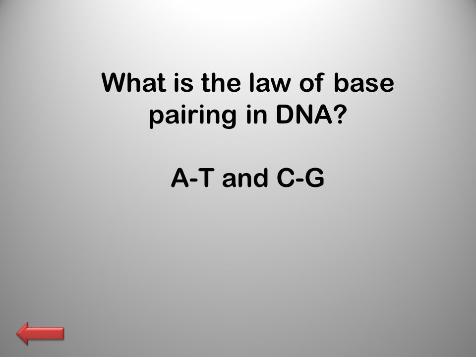 What is the law of base pairing in DNA A-T and C-G
