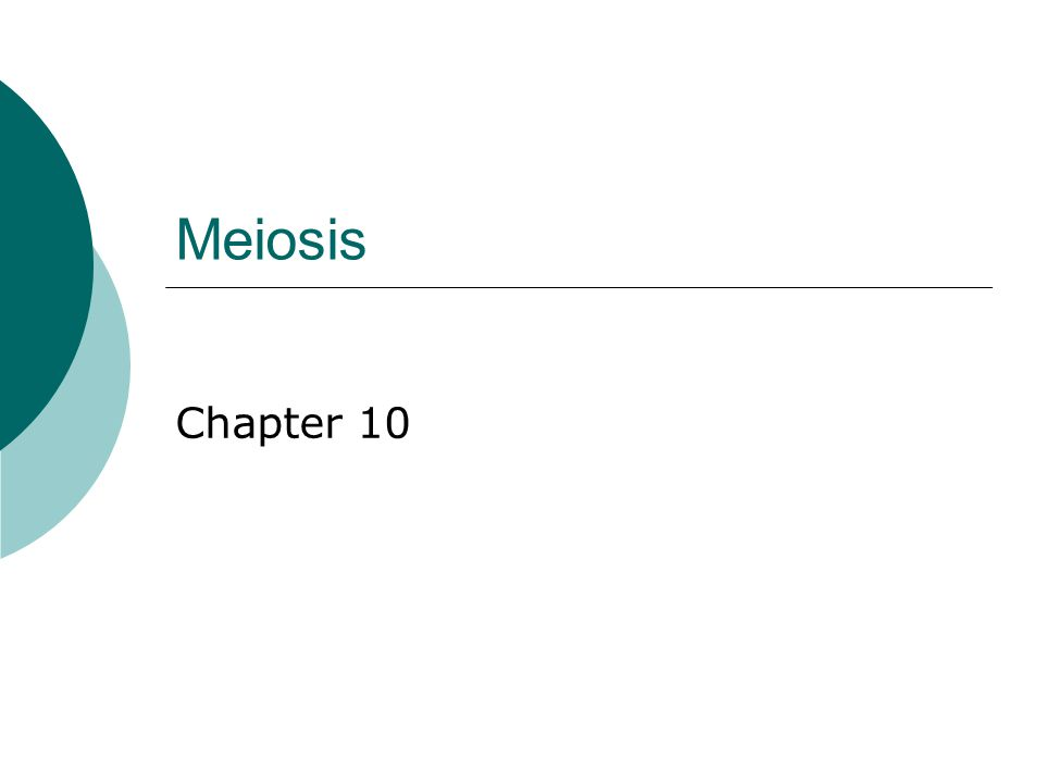 Meiosis Chapter 10