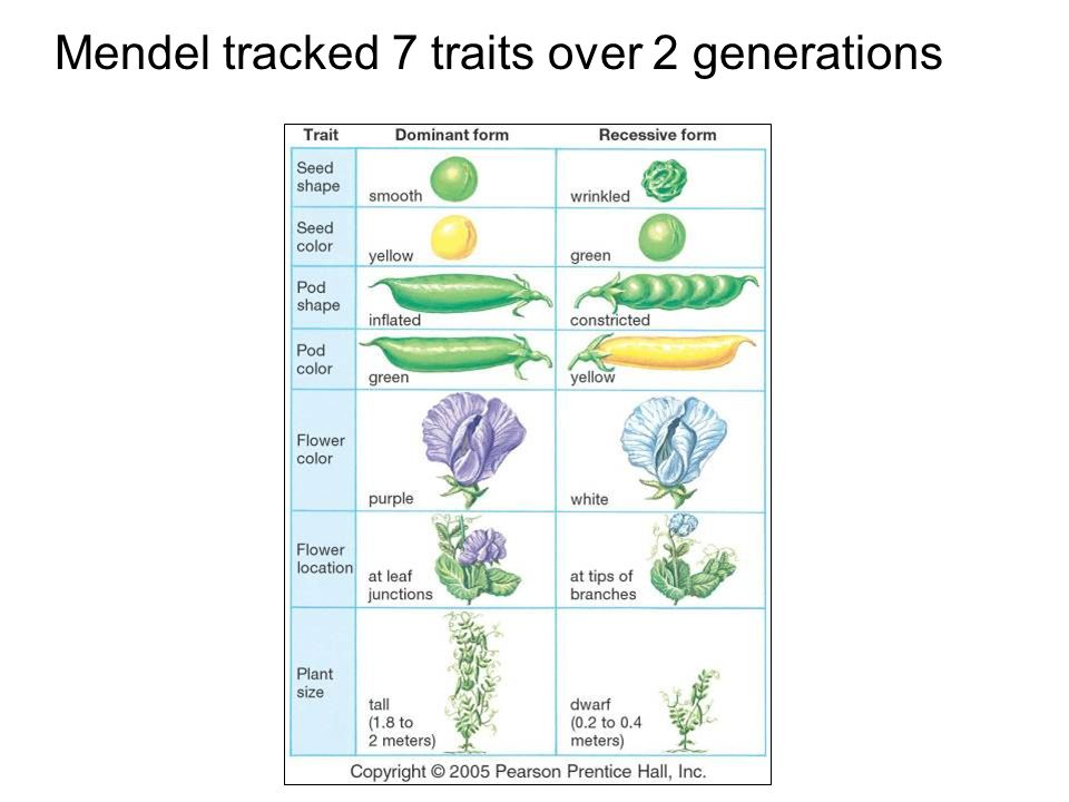 Mendel tracked 7 traits over 2 generations