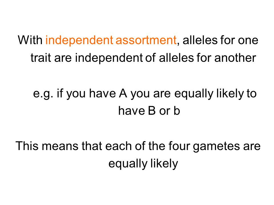 With independent assortment, alleles for one trait are independent of alleles for another e.g.