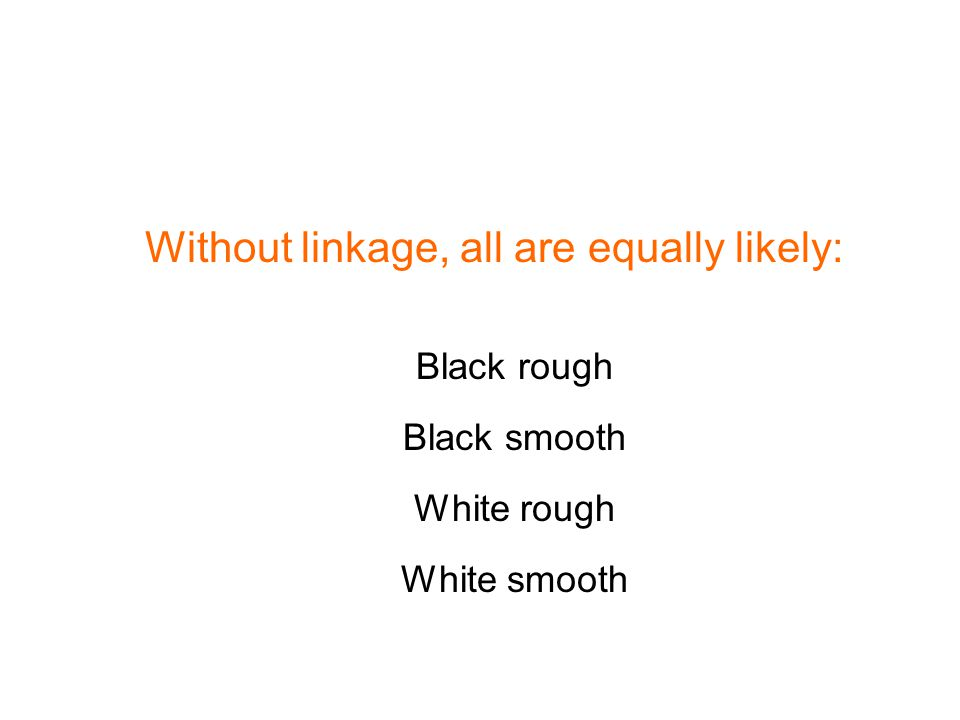 Without linkage, all are equally likely: Black rough Black smooth White rough White smooth