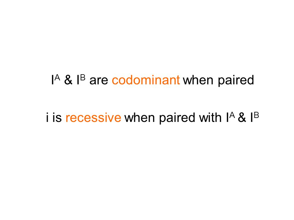 I A & I B are codominant when paired i is recessive when paired with I A & I B