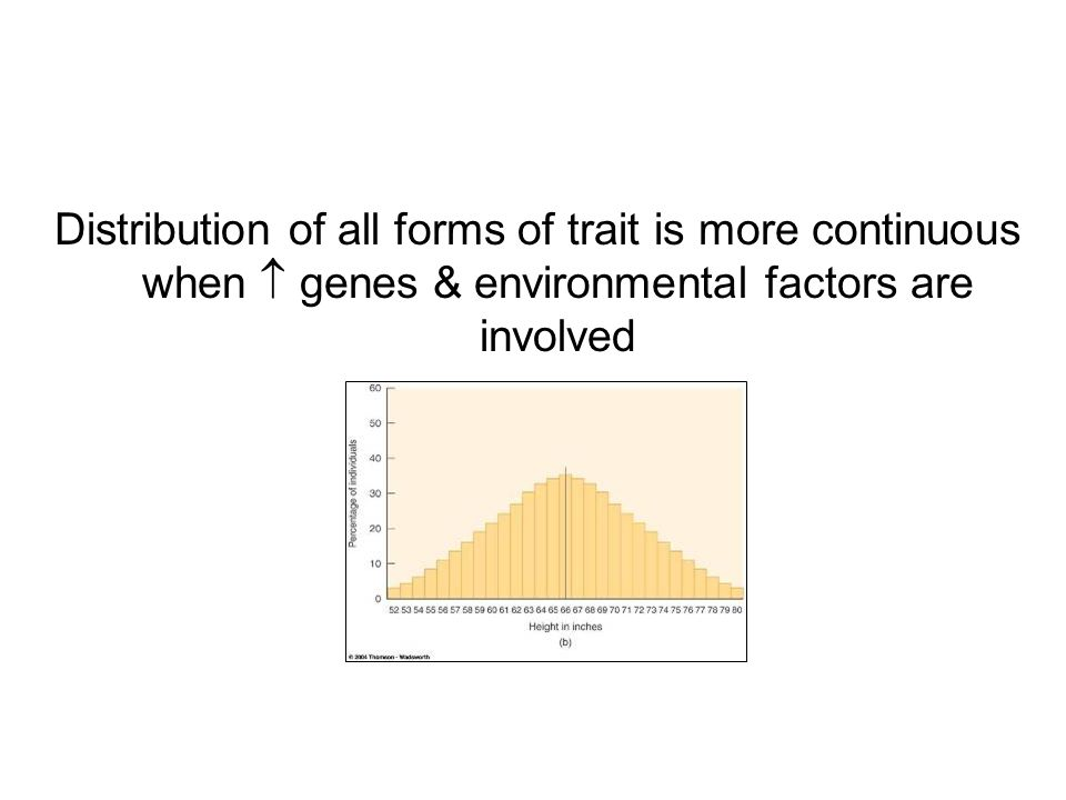 Distribution of all forms of trait is more continuous when  genes & environmental factors are involved = bell curve Becomes harder to classify phenotypes reliably
