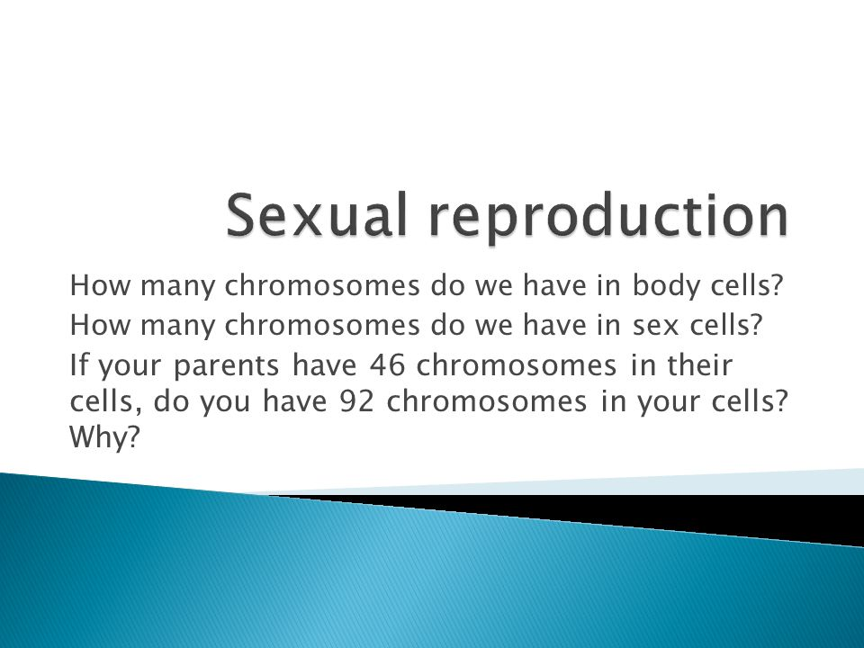 Hereditary information is contained in genes, located in the chromosomes of each cell.