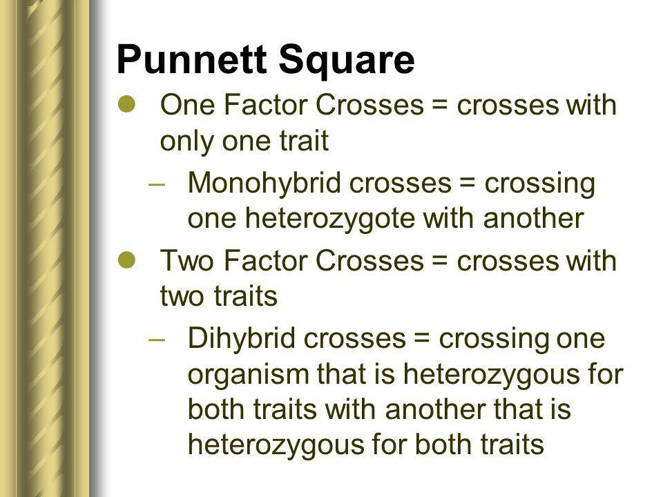 Punnett Square One Factor Crosses = crosses with only one trait –Monohybrid crosses = crossing one heterozygote with another Two Factor Crosses = cros