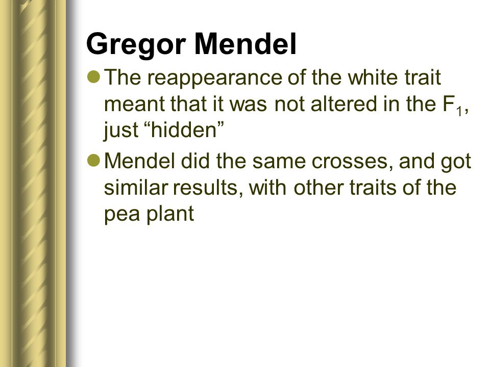 """Gregor Mendel The reappearance of the white trait meant that it was not altered in the F 1, just """"hidden"""" Mendel did the same crosses, and got similar"""