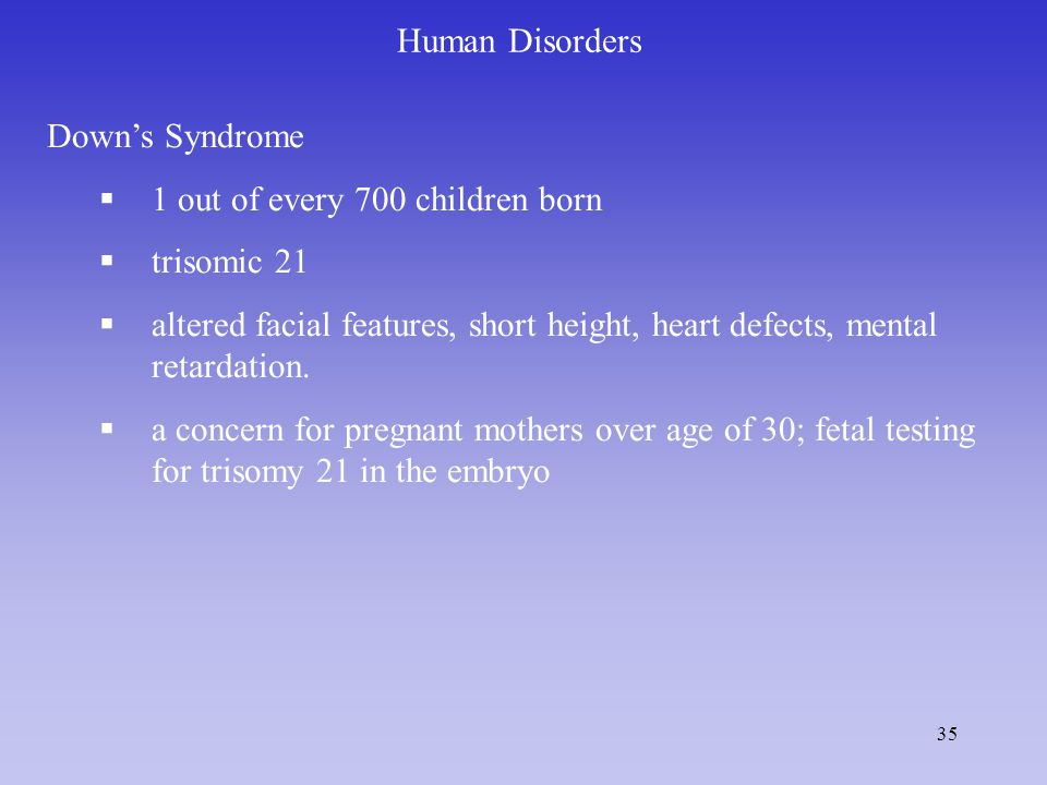 35 Human Disorders Down's Syndrome  1 out of every 700 children born  trisomic 21  altered facial features, short height, heart defects, mental retardation.