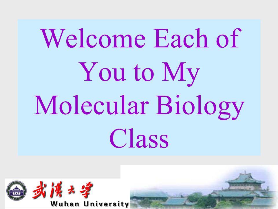 Model 5: THE FRUIT FLY, Drosophila melanogaster CHAPTER 15 The Genetic Code 4/22/05