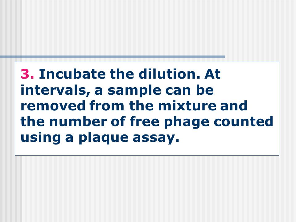 3. Incubate the dilution.