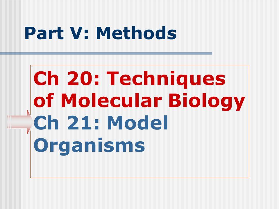 Part V: Methods Ch 20: Techniques of Molecular Biology Ch 21: Model Organisms