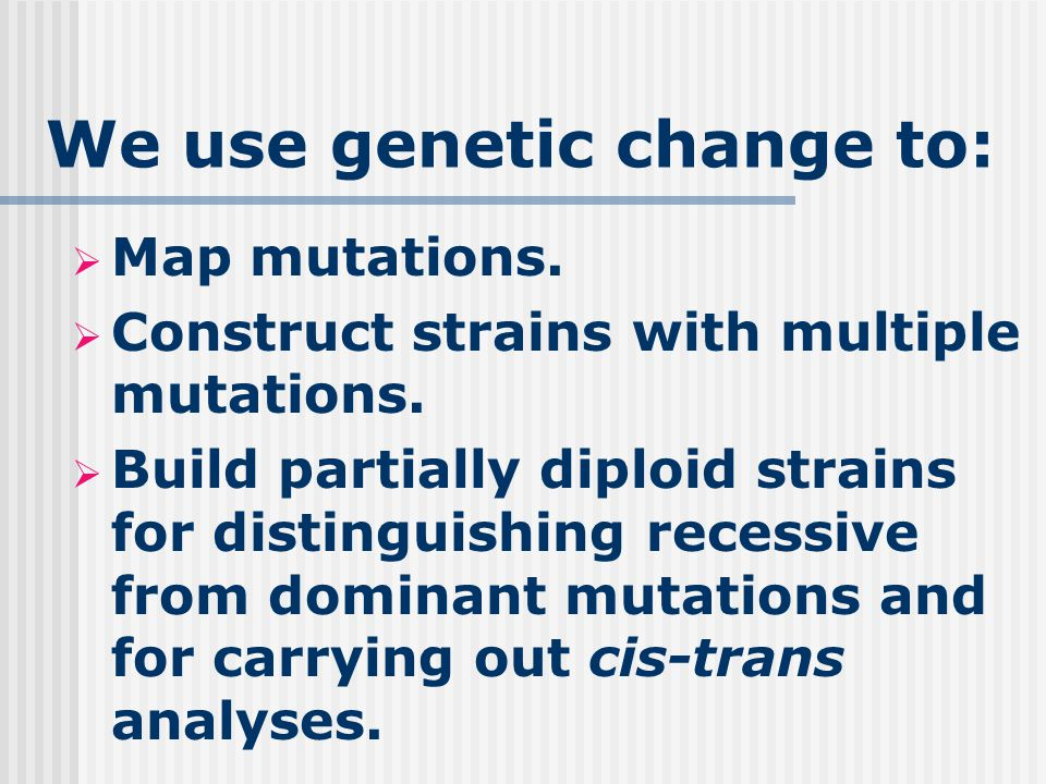We use genetic change to:  Map mutations.  Construct strains with multiple mutations.