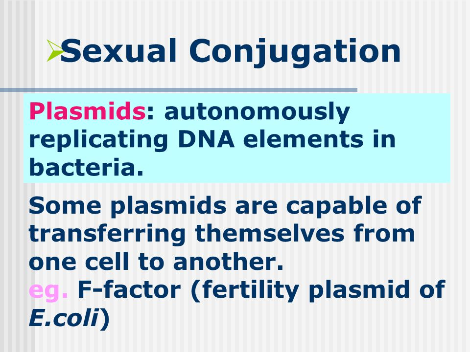  Sexual Conjugation Plasmids: autonomously replicating DNA elements in bacteria.