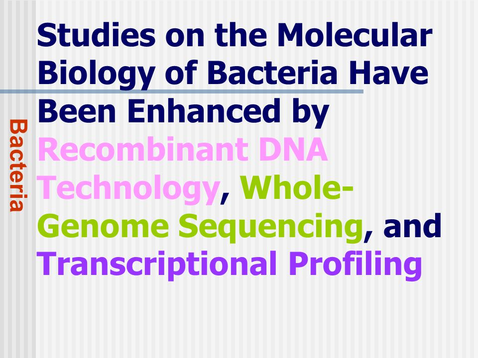 Studies on the Molecular Biology of Bacteria Have Been Enhanced by Recombinant DNA Technology, Whole- Genome Sequencing, and Transcriptional Profiling Bacteria