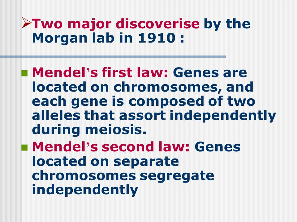  Two major discoverise by the Morgan lab in 1910 : Mendel ' s first law: Genes are located on chromosomes, and each gene is composed of two alleles that assort independently during meiosis.