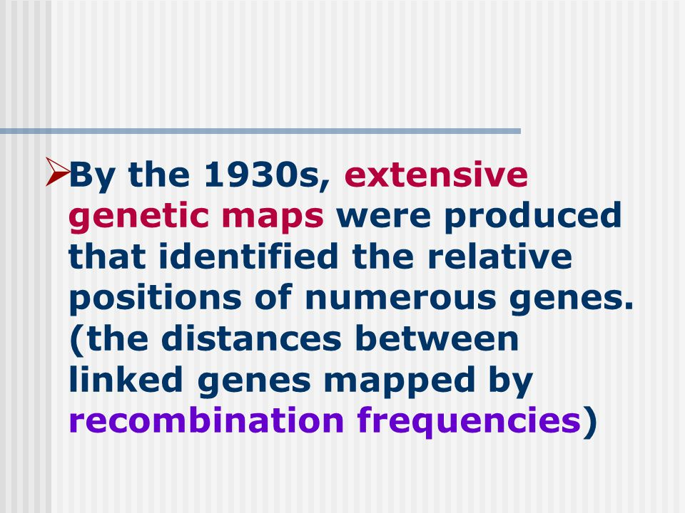  By the 1930s, extensive genetic maps were produced that identified the relative positions of numerous genes.